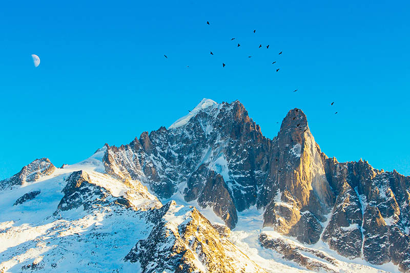 Beautiful mountains. The top of the mountain, moon and the birds. Ski resort in Chamonix Grands Montets, French Alps, France, Europe.; Shutterstock ID 559003054; PO: michelin