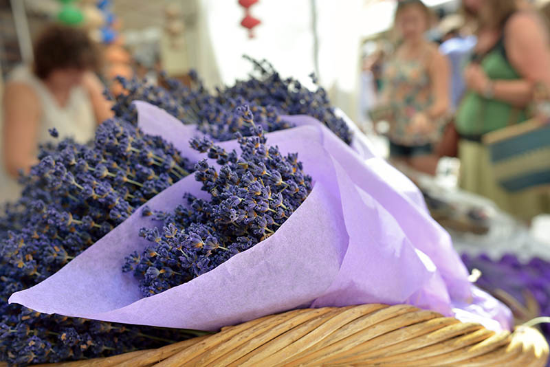 Beautiful bouquets of lavender  flowers for sale on the street of the small village Vaison la Romanie, Provence, France