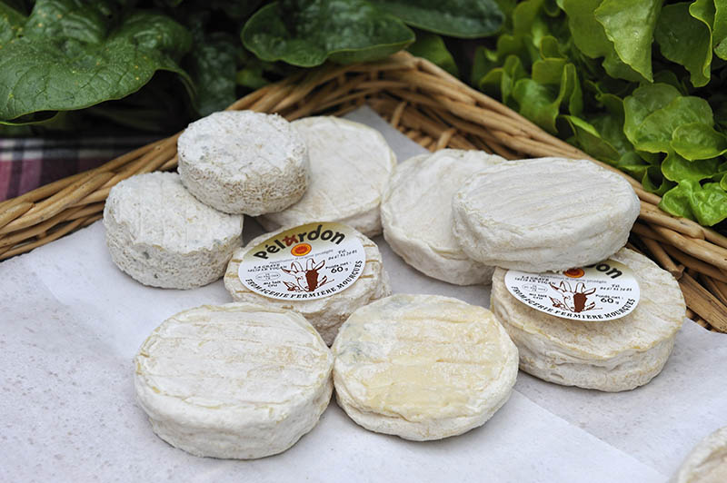 French cheese Pelardon at the market of Le Vigan, Gard department, Languedoc-Roussillon region, France, Europe.