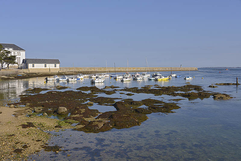 Little port of Le Croisic, a commune in the Loire-Atlantique department in western France