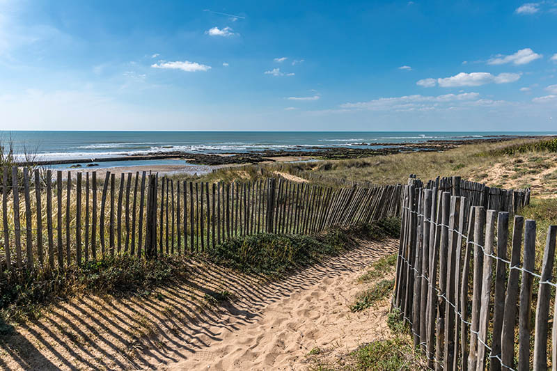 Path in the dunes towards the beach of la Paracou Les Sables d'Olonne
