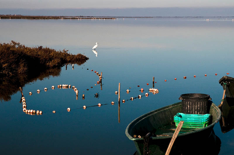 Lagoon Vaccares with white egret and boat, the Camargue, Southern France